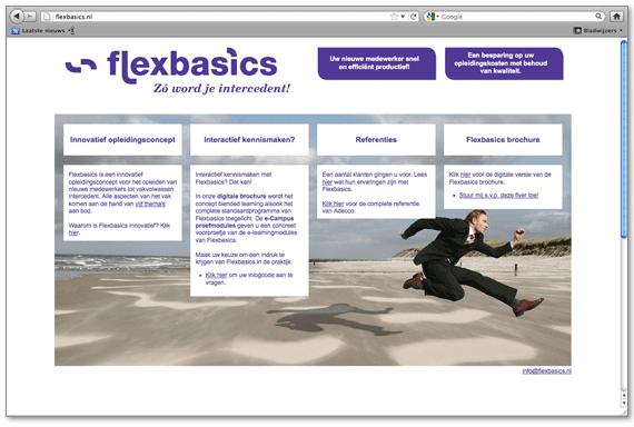 flex_site